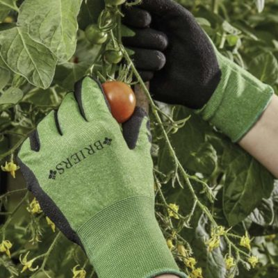Gloves & Workwear