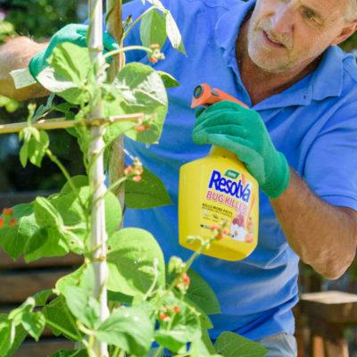 Fungicides & Pesticides