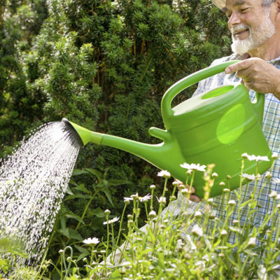 Watering Cans & Sprayers